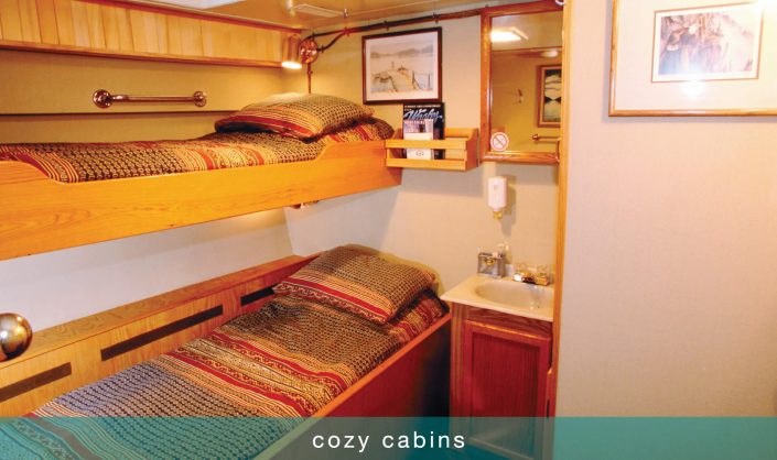 Cozy cabins on our Tugboat Cruise